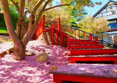 Spring_03